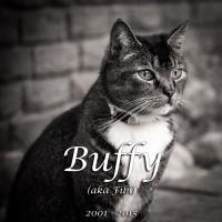 Abschied von Buffy