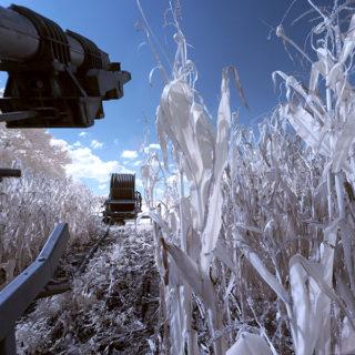 Radbruch und Umland infrarot