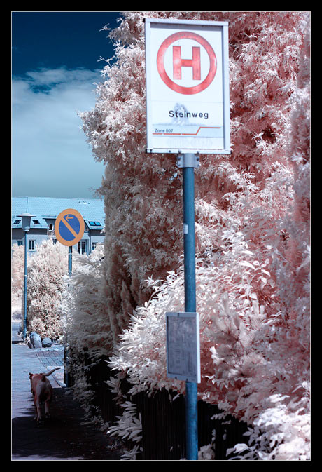 Streetphotography (IR)